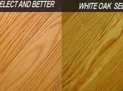 The difference between Red Oak and White Oak